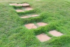 Stone path through on green grass in the garden. Stock Photos