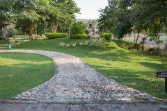 Stone path in green grass Stock Images
