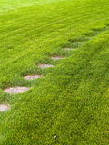 Stone path through a green grassy lawn Stock Image