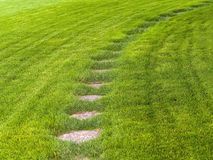 Stone path through a green grassy lawn Stock Photo