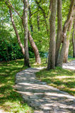 Stone path between green trees Royalty Free Stock Photos