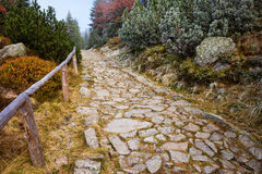 Stone Path in High Autumn Mountains Royalty Free Stock Photo