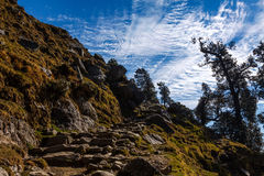 Stone path in Himalayas. A stone trek up in green hills Stock Image