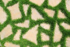 Free Stone Path In Green Grass Garden Texture Royalty Free Stock Image - 19401296