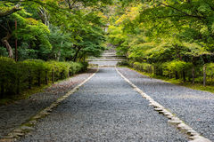 Stone path through Japanese forest in early Autumn Royalty Free Stock Image