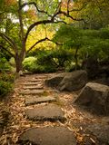 Stone path through Japanese garden in autumn. Stone foot path through a Japanese garden in autumn in Lithia Park located in Ashland, Oregon royalty free stock image