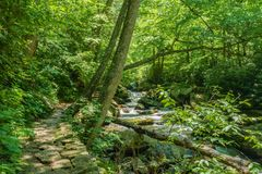 Stone Path by Little Stony Creek. Located in the Jefferson National Forest, Giles County, Virginia, USA royalty free stock images