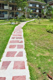 Stone path in the middle of a green lawn Royalty Free Stock Images