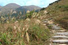 Stone path in the mountains Royalty Free Stock Image