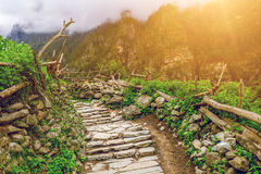 Stone path in mountains Stock Images
