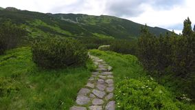 Stone path in mountains stock footage