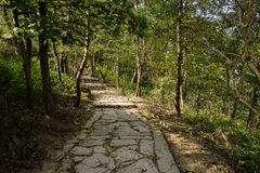 Stone path on mountainside in sunny afternoon Stock Photography