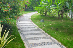 Stone path in park Stock Images