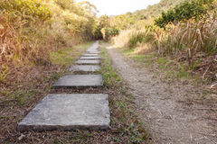 Stone path in park Royalty Free Stock Photos