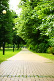 The stone path in the park. Stock Images