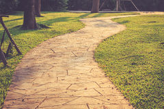 Stone path in the park and surrounding by green grass Stock Image