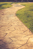 Stone path in the park and surrounding by green grass Royalty Free Stock Photography