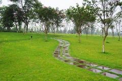 Stone path in the rain Royalty Free Stock Photo