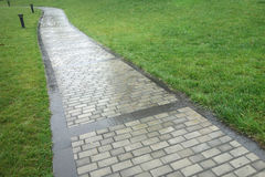 Stone path in the rain. Stone path with grass in the rain Stock Photography