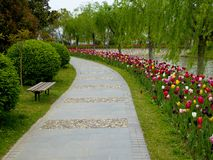 Stone path at Shanghai flower port Royalty Free Stock Images