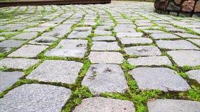 Stone path stock video