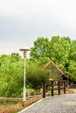 The stone path and streetlamp. This photo was taken in Nanjing China Green Expo Garden ,Nanjing city, Jiangsu province, china Stock Photos