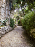 Stone path. Surrounded by green lush vegetation Royalty Free Stock Photo