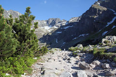 Stone path in Tatra Mountains near Black Pond Gasienicowy, Poland Royalty Free Stock Photography