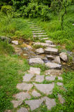 Stone path throw stream. Stone path throw the stream royalty free stock image
