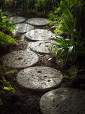 Stone Path Tropical Garden Landscape decoration Royalty Free Stock Photos