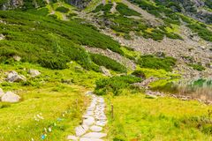 Stone path for a walk around the lake. In the Tatras stock photo