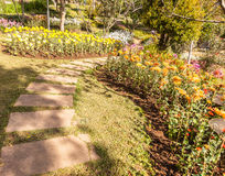 Stone path winding in fresh spring flower garden Stock Photo