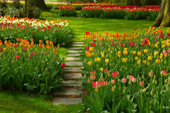 Stone path  winding in a garden Royalty Free Stock Photography