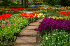 Stone path  winding in a garden Stock Photo