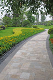 Stone path with yellow flowers Royalty Free Stock Image