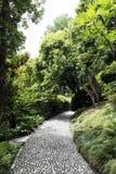 Stone Pathway. In bothanical garden stock photos