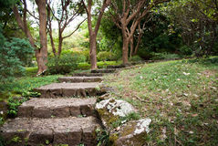 Stone Pathway. Stone stairway path leading up through green landscape Royalty Free Stock Photography
