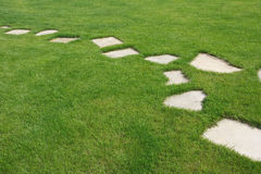 Stone pathway. The Stone pathway in the backyard Royalty Free Stock Photo