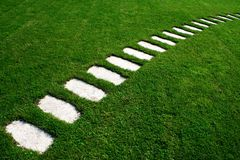 Stone pathway across cultivated lawn. Stone pathway across cultivated garden lawn royalty free stock photo
