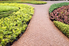Stone pathway in garden Royalty Free Stock Photography
