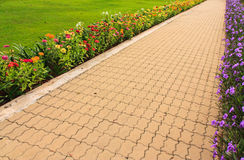 Stone pathway in garden Royalty Free Stock Images