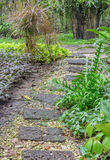 Stone pathway in garden Royalty Free Stock Photo