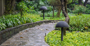 Stone pathway in garden Stock Image