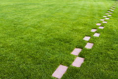 Stone pathway in the grass Stock Image