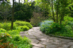 Stone pathway in lucious garden Stock Photography
