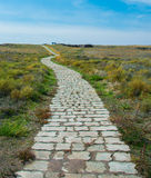 Stone Pathway. Stone paved pathway goes to infinity Royalty Free Stock Images