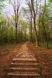 A stone pathway and stairs through the woods near The Museum of Yugoslav History in Belgrade Stock Images