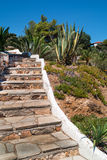Stone pathway of stone into garden during day time at Chalkidiki Royalty Free Stock Photo