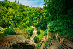 Stone Pathway Walkway Lane Path With Green Trees Stock Photography