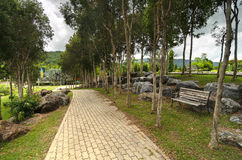 Stone pathway and a wooden bench in a park under green trees Stock Photography